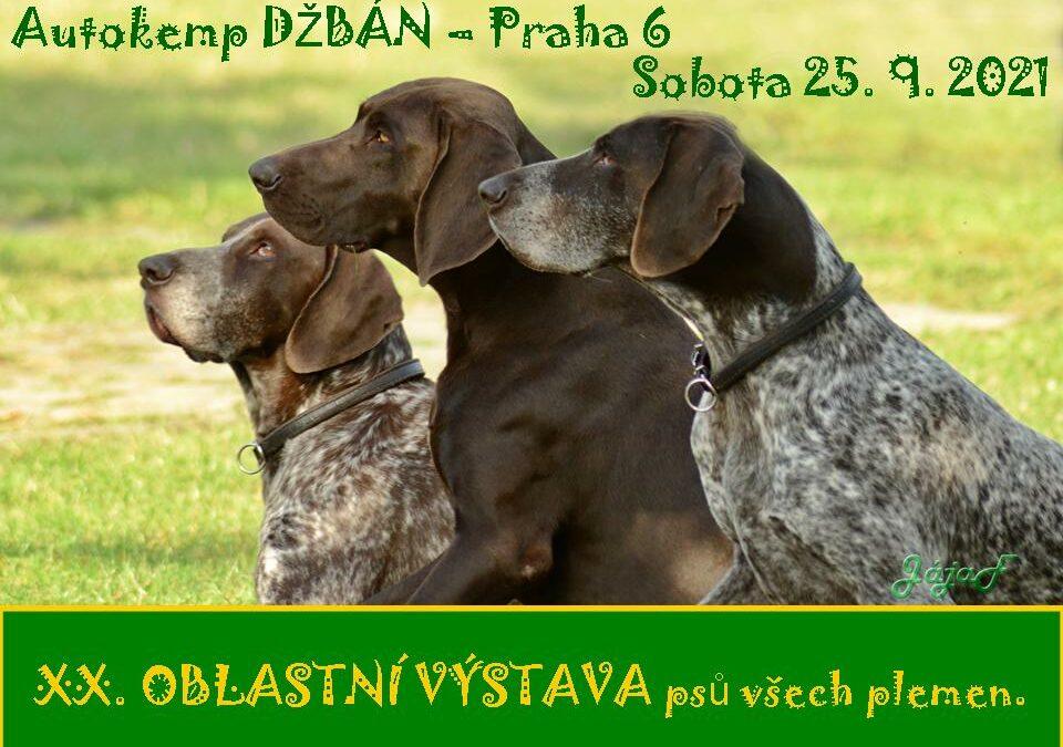 XX. Oblastní výstava psů všech plemen.